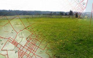 Что такое кадастровый план земельного участка: стоимость составления, где получить и посмотреть на карте по номеру